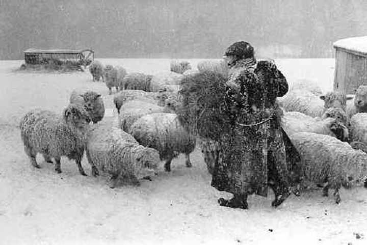 """Archie Parkhouse bringing hay for sheep, Dolton, 1983"" image by James Ravilious for the Beaford Archive © Beaford Arts"