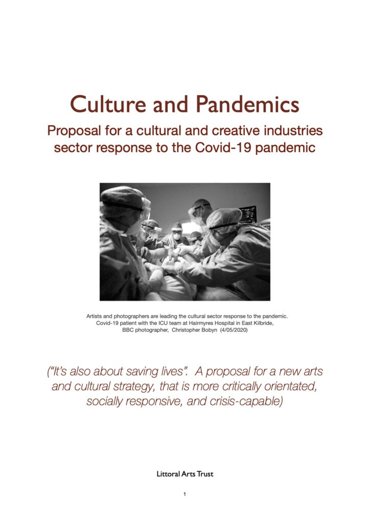Culture and Pandemics cover